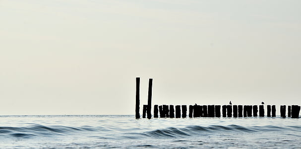 silhouette of inline poles on body of water under white sky at daytime