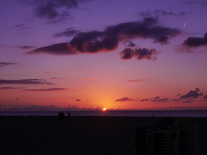 ocean during golden hour view